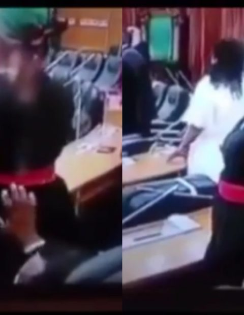 "Video of a Nigerian Mp caught on camera squeezing the ""Butt"" of another female MP in Parliament trends online"