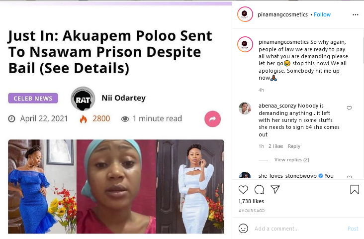 CEO of Pinamang cosmetics to pay Akuapem Poloo's full bail amount despite their long standing beef